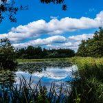 Water, veen en natuur! Het échte genieten doe je in Steenwijkerland