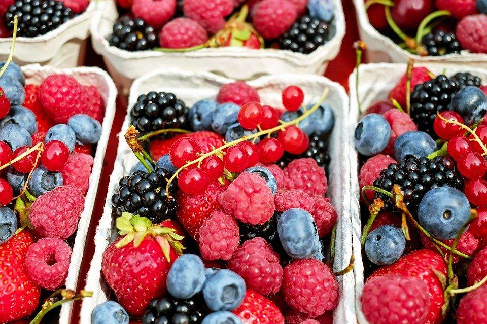 Vink Fruitboerderij (ilovegiethoorn.nl)
