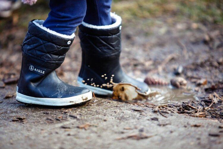 Loop het Laarzenpad in Weerribben Wieden